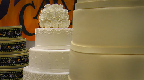 Masterpiece Cake Shop in Colorado will bake for dog wedding but not for gay marriage