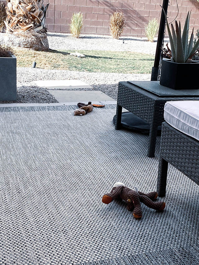 Several dog toys strewn across the yard the day after Christmas 2020