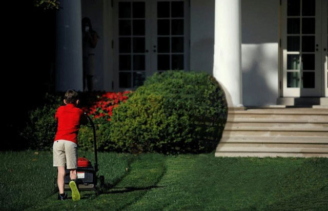lawn boy with no Donald Trump yelling