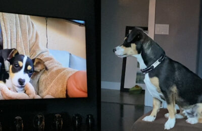 Brody became fascinated with seeing himself on TV