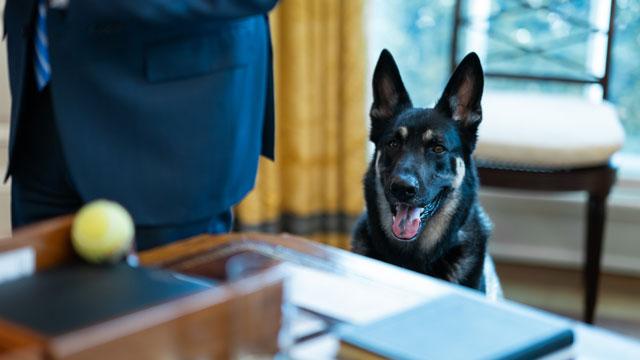 Major Biden in the Oval Office