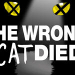"Hit play to hear my interview with the fun podcast ""The Wrong Cat Died"""