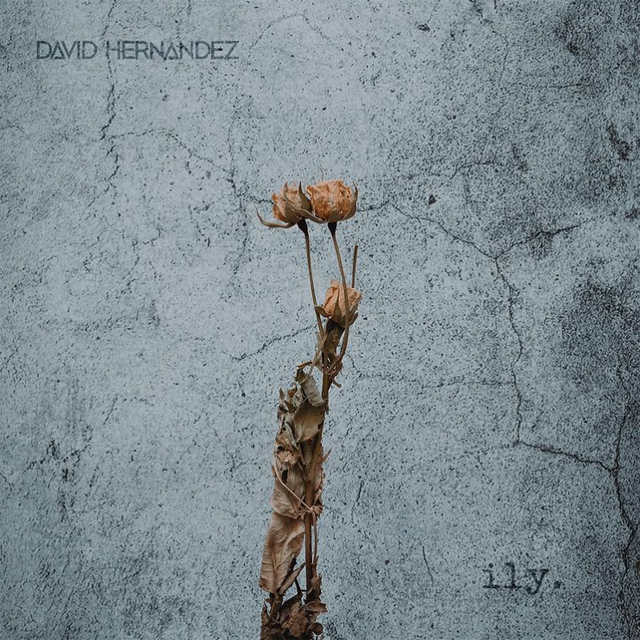 """Cover art for David Hernandez's new single """"ILY."""""""