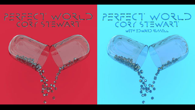 Cory Stewart's latest single 'Perfect World' comes in two flavors