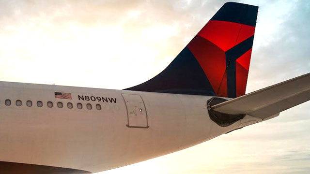 Delta Airlines (image via Official Facebook page)